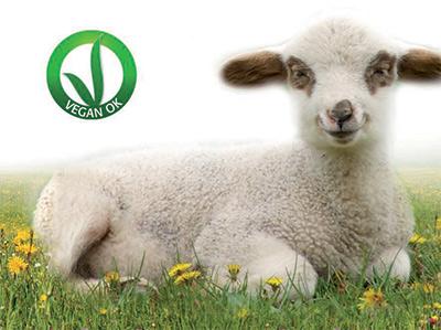 Pasqua Vegan